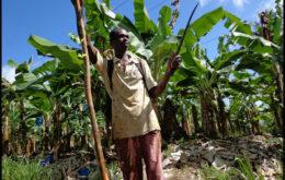 Dominican farmer. Image credit: scottmontreal