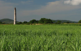 Sugarcane fields in Cuba. Image credit: lezumbalaberenjena