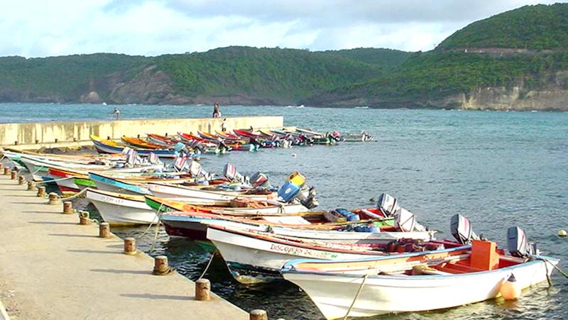 Image via IUCN Caribbean