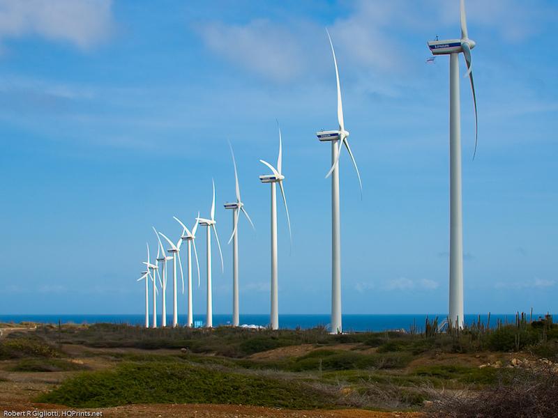 Wind turbines, Aruba. Image: Robert R Gigliotti
