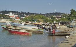 Fishers, Jamaica. Photo credit: Gary O. Grimm
