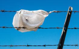 Plastic bag. Image: Mitchell Haindfield