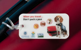 Don't Pack a Pest. Image via: Central Florida Ag News