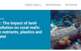 UNEP webinar: the impact of land-based pollution on coral reefs