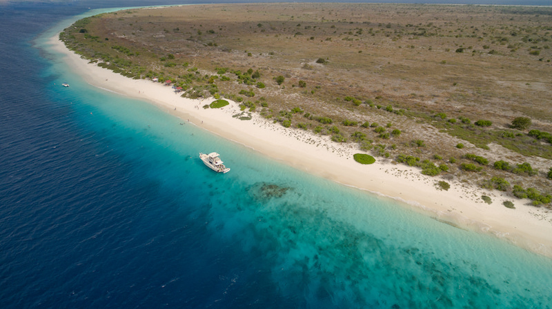 Bonaire. Image: Falco Ermert