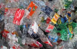 Plastic bottles. Image: Lisa Risager