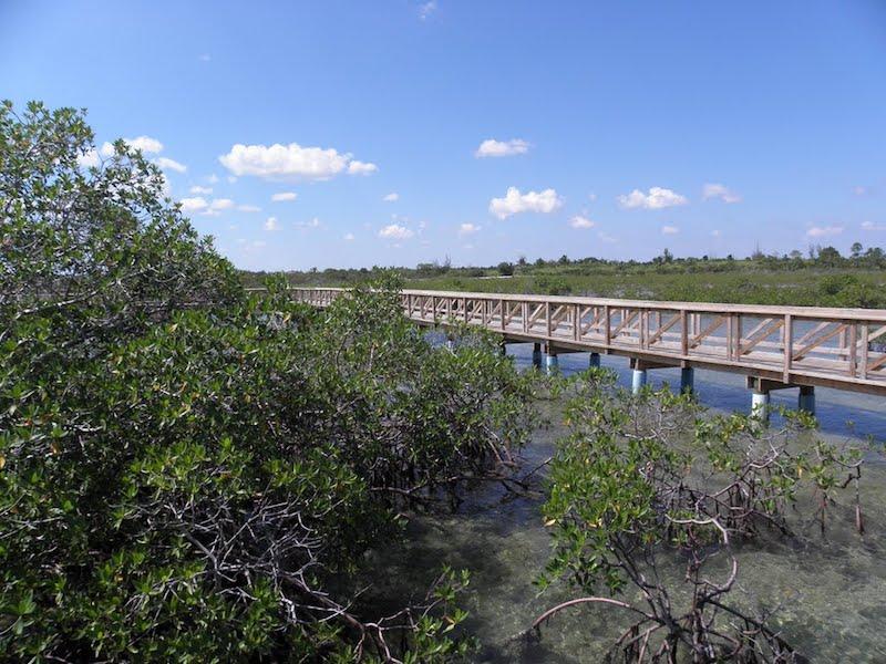 Bonefish Pond, The Bahamas. Image: via Panoramio.