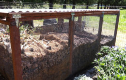 Compost bin. Image: Gail Langellotto