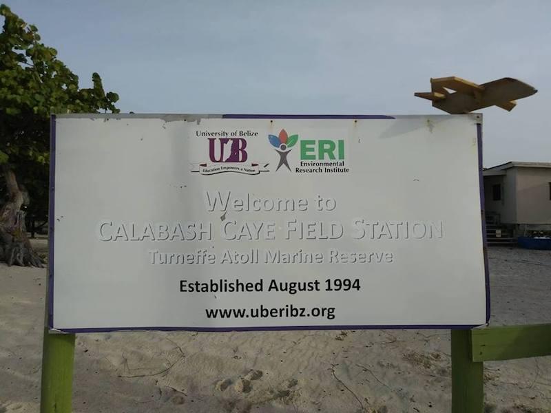 Calabash Caye Field Station, Belize. Image: courtesy Megan Trotman.