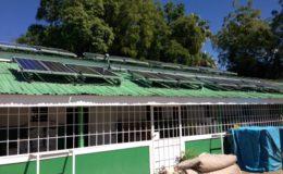 Solar panels, Haiti. Image via: CDC Global