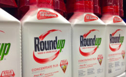 Roundup. Image: Mike Mozart
