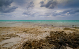 Turks and Caicos seascape. Image: Ben Saren