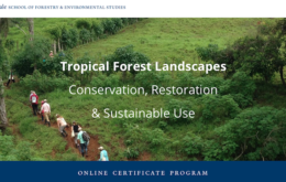 Tropical Forest Restoration online course.