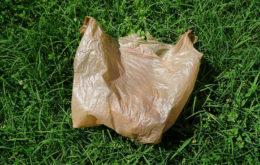 Plastic bag. Image: Takoma Park