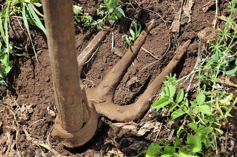 Soil. Image: CIAT